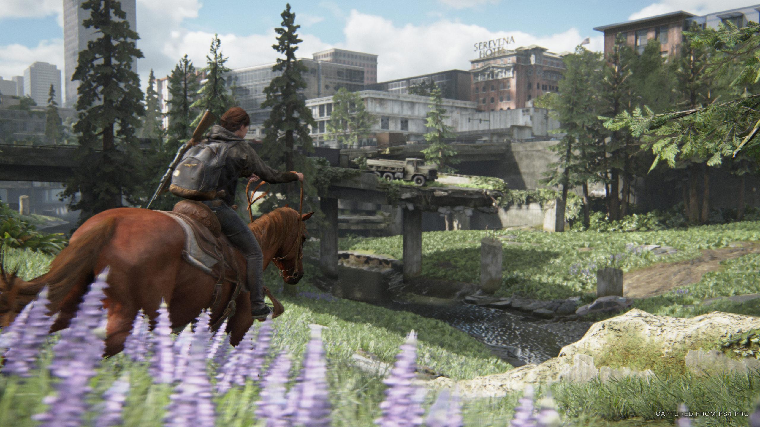 Ellie reite mit einem Pferd und genießt die Aussicht in Seattle